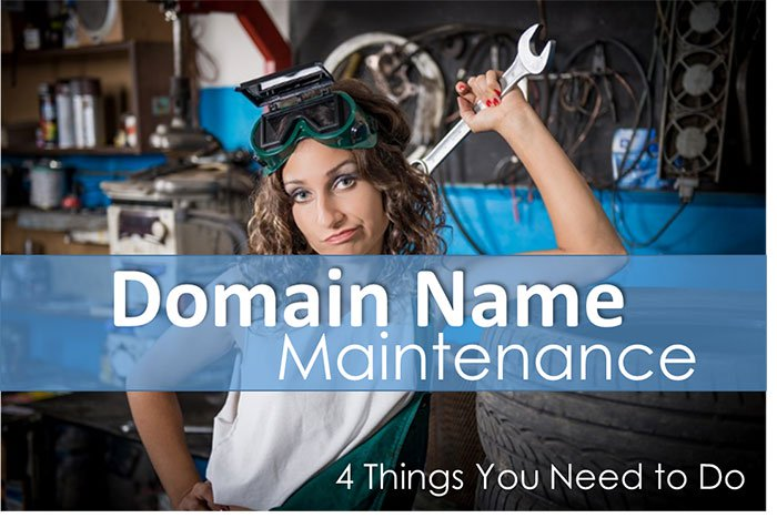 domain name maintenance