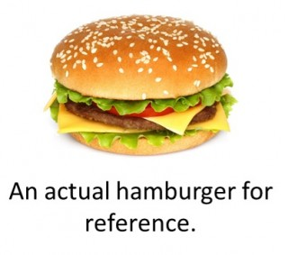 Actual-Hamburger.jpg